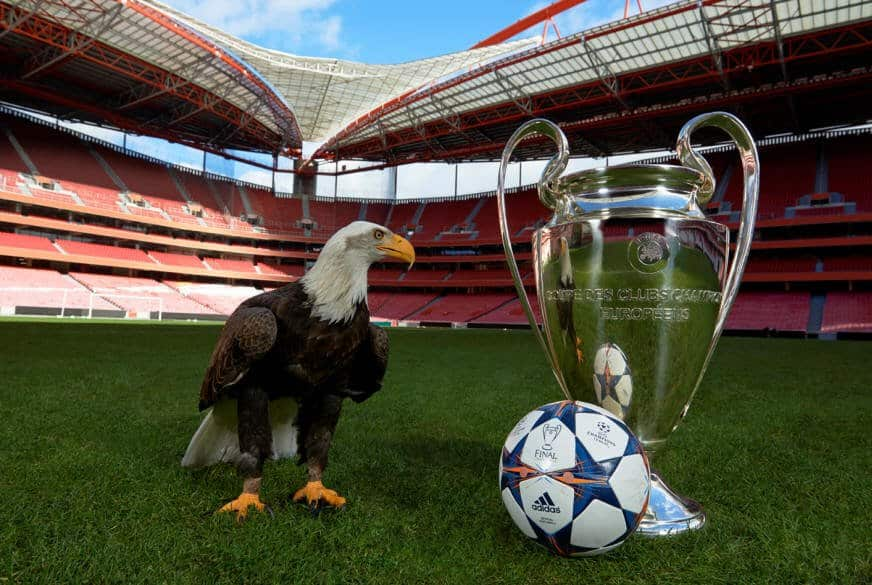 Final Lisbon Eagle UEFA Champions League Final Lisbon 2014