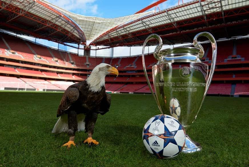 Final Lisbon Eagle UEFA Champions League Final Lisbon 2014